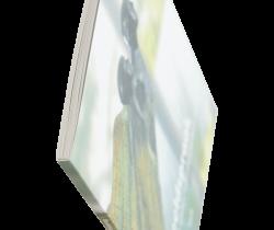Brochures genaaid drukken